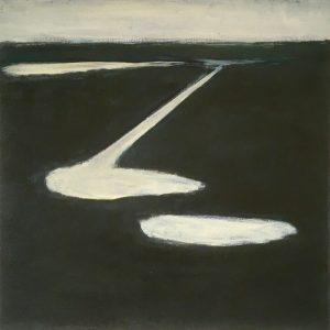 plassen (2), 2017